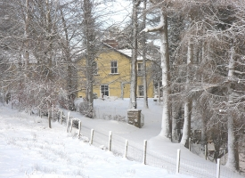 Farmhouse & trees in snow